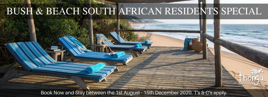 bush-and-beach-south-african-residents-special