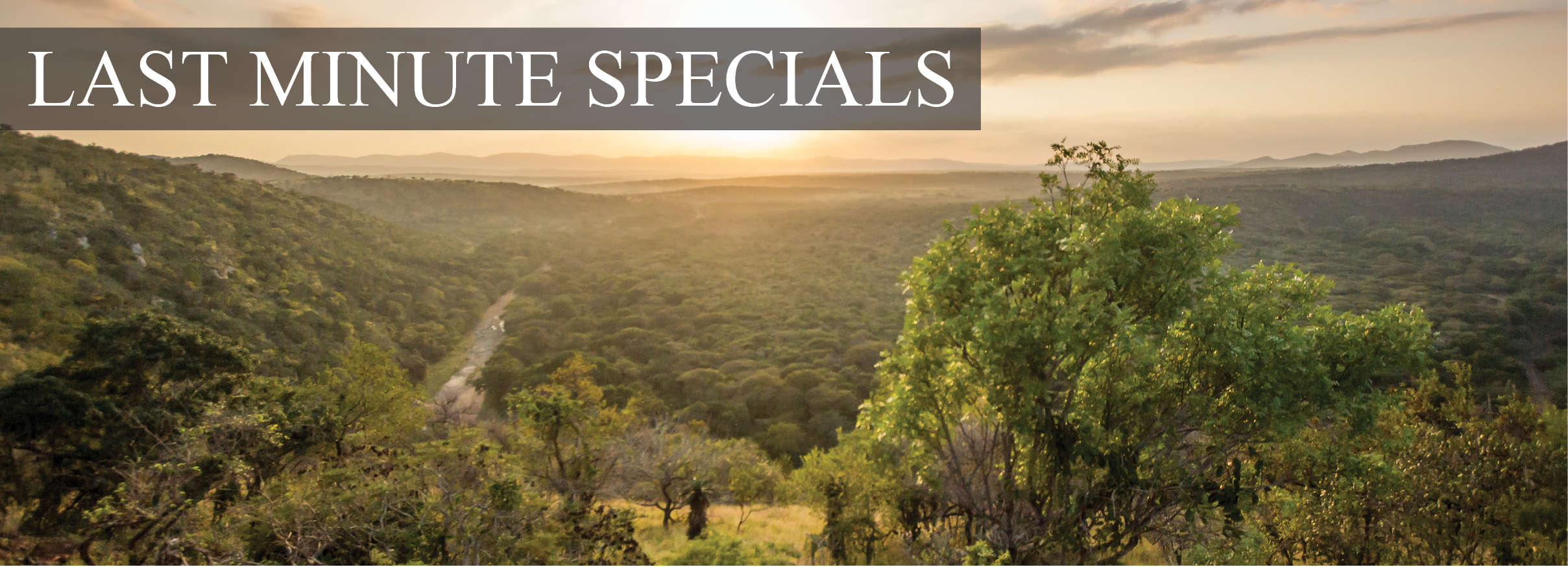 leopard-mountain-lodge-last-minute-special-2021